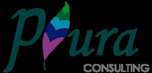 4. PLURA CONSULTING cropped-Logotipo-Plura-5
